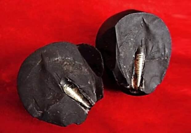 Доказательство развитой доисторической цивилизации?