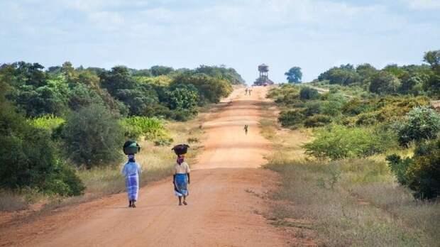 «Роснефть» проявляет неосторожность из-за влечения к Мозамбику