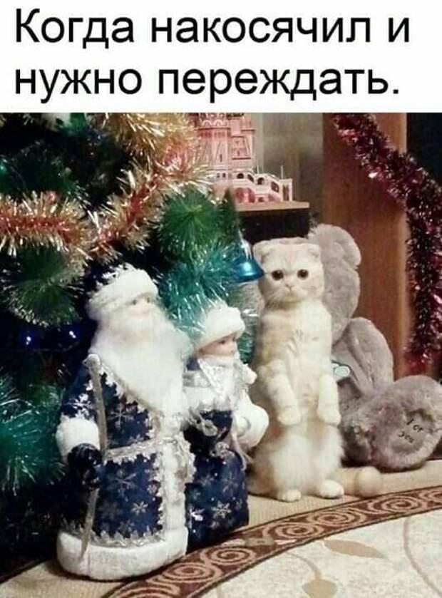 - Здравствуй, Иван Царевич, мы получили твою стрелу. К сожалению, сейчас все лягушки заняты, но твоя стрела очень важна для нас. Оставайся на линии …