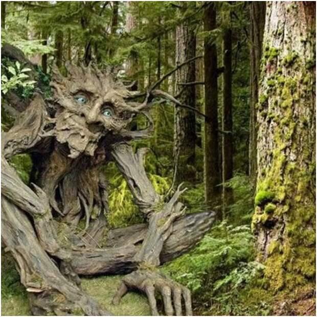 Лесной морок. Страшная история