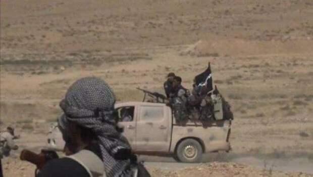 СМИ: ИГИЛ захватил опорный пункт сирийской армии на«нефтяной дороге»