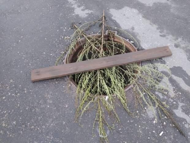 В центре Рязани открытый люк прикрыли ветками и дощечкой