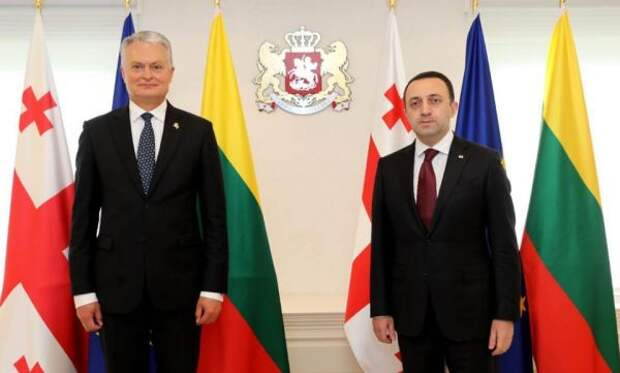 «Дежурные заявления»: что кроется завизитом президенты Литвы вГрузию?