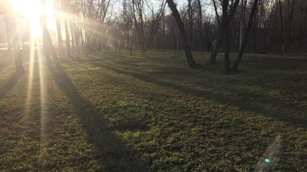 Москвичам пообещали летнюю погоду до конца недели