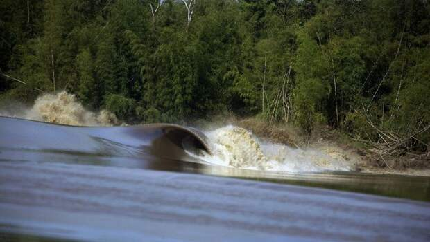 Когда реки текут назад: где на Земле можно увидеть редкие приливные волны