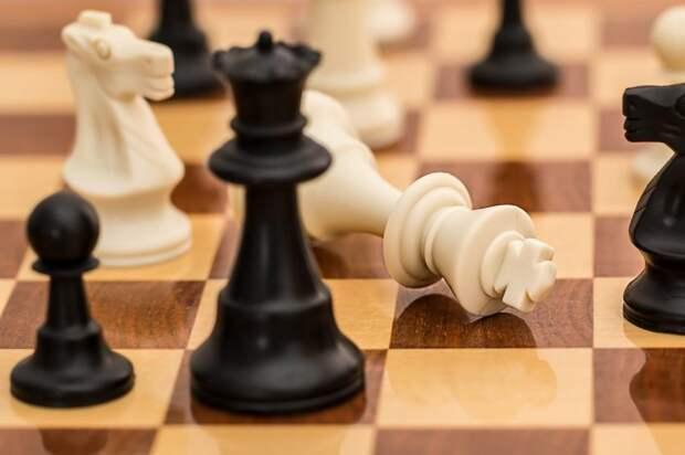 В досуговом центре на Синявинской открылся набор будущих шахматистов