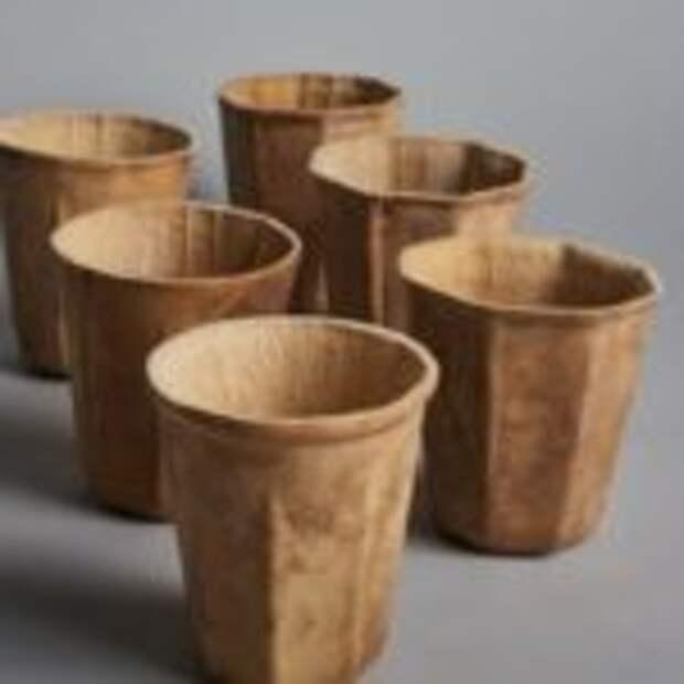 Экологичные стаканы из тыквы