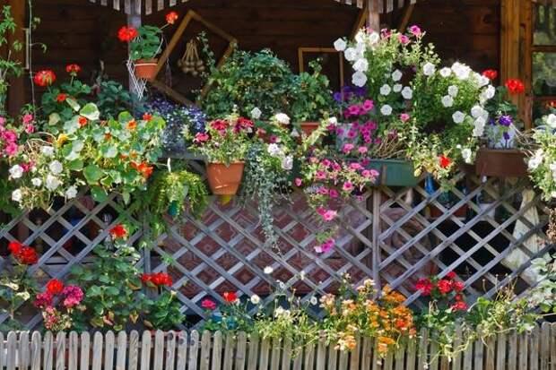 Деревянный забор может быть симпатичным, оригинальным и красивым