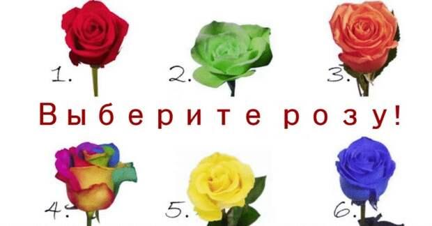 Выберите розу и узнайте что-то о себе