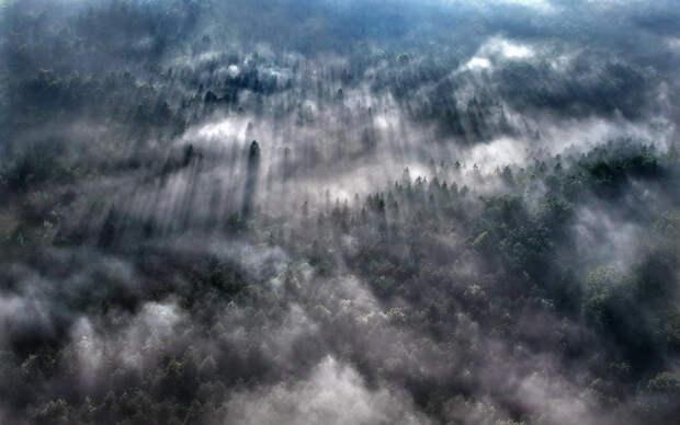 100 изумительных фотографий тумана (часть 2)