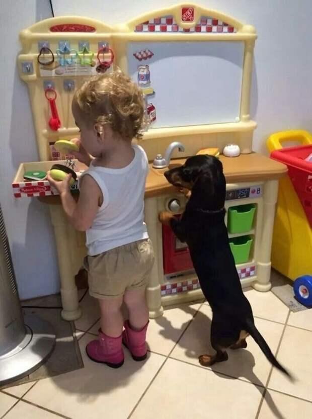 21 милое доказательство того, что каждому ребенку нужна собака