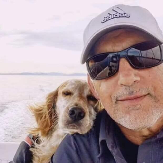Собака с мужчиной