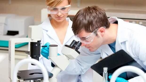 Новые научные проекты получили поддержку ВСНК