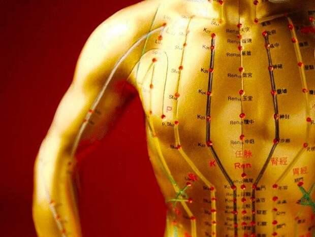 Акупунктурные точки для похудения