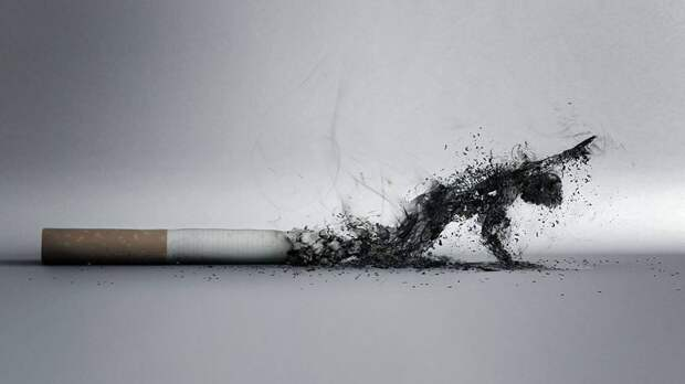 Бросить курить за один день – возможно ли?