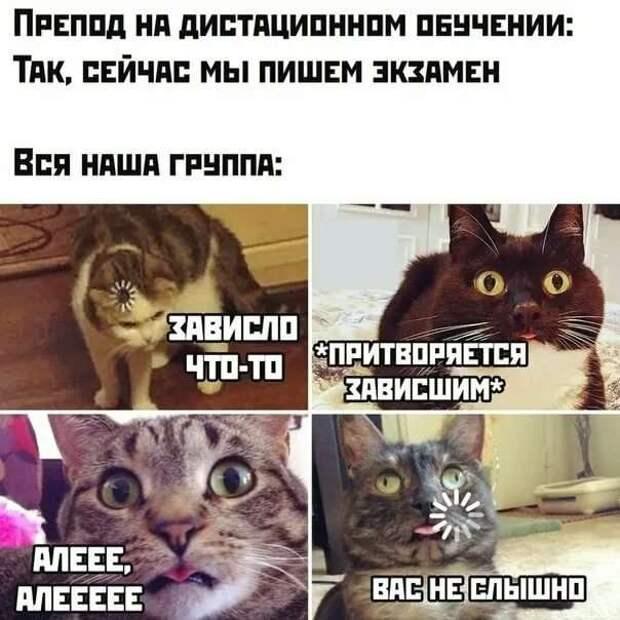 Смешные комментарии. Подборка chert-poberi-kom-chert-poberi-kom-48070416012021-10 картинка chert-poberi-kom-48070416012021-10