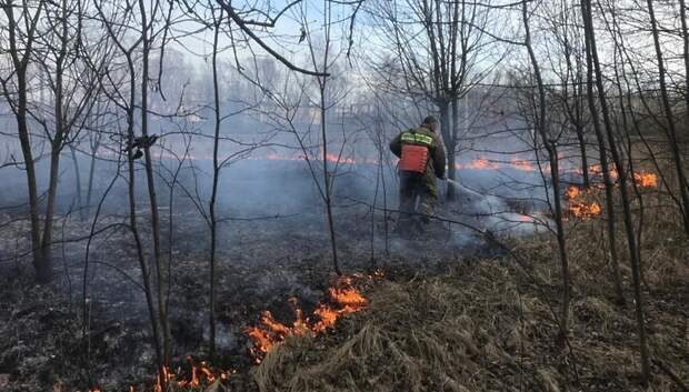 Возгорание сухой травы ликвидировали в микрорайоне Львовский Подольска