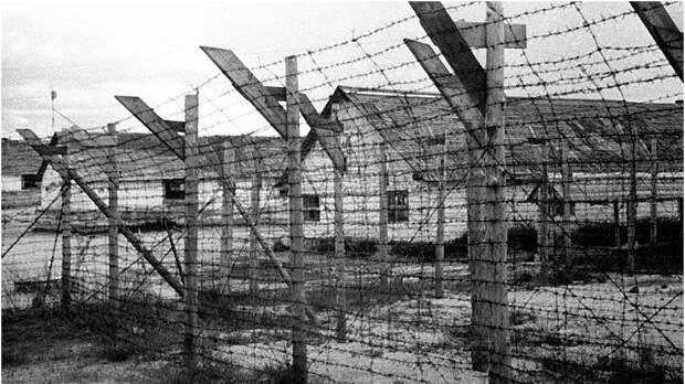 Документ о немецком концлагере Dulag-142 пролил свет на преступления нацистов под Брянском