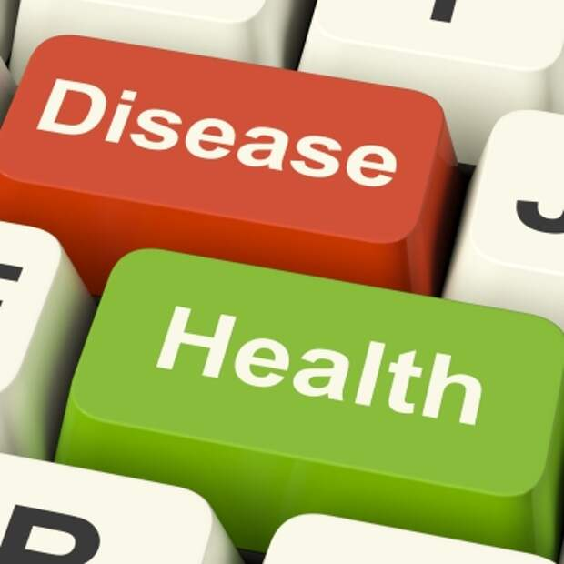 Что в первую очередь нужно для здорового питания. Новые исследования