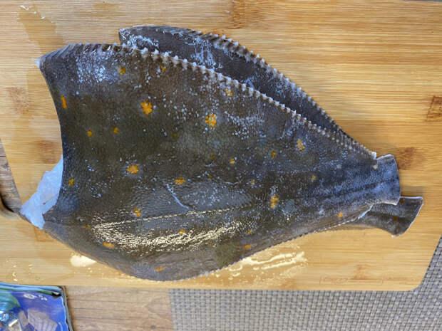 Просто Рыбка Камбала