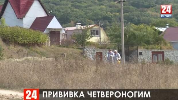 В карантинной зоне под Симферополем бесплатно вакцинируют домашних животных