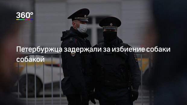 Петербуржца задержали за избиение собаки собакой