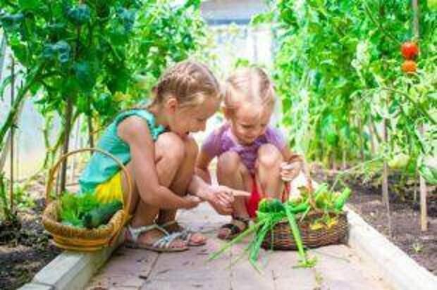 Навитаминиться. На какие продукты детям стоит налегать весной