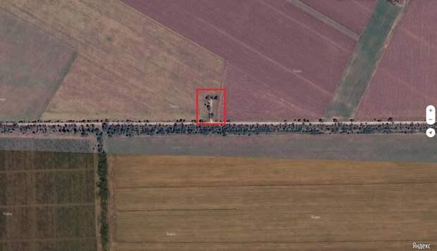 Власти Крыма не могут выделить землю, чтобы захоронить останки более 200 советских солдат
