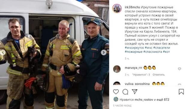 Наглотавшегося дыма кота спасли на пожаре в Иркутске