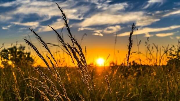 Климатологи предупредили россиян о надвигающейся аномальной жаре