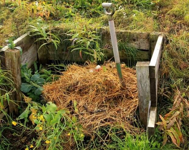 Закладка компоста