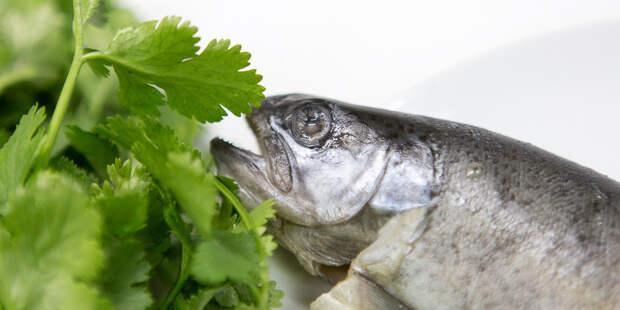 Диетолог назвал продукты с максимальным содержанием витамина D