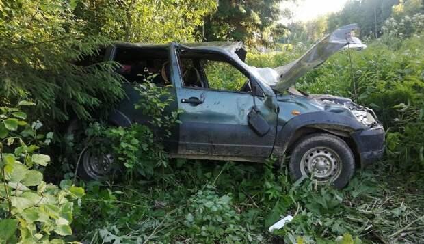 Житель Ижевска устроил ДТП с тремя пострадавшими в Прикамье