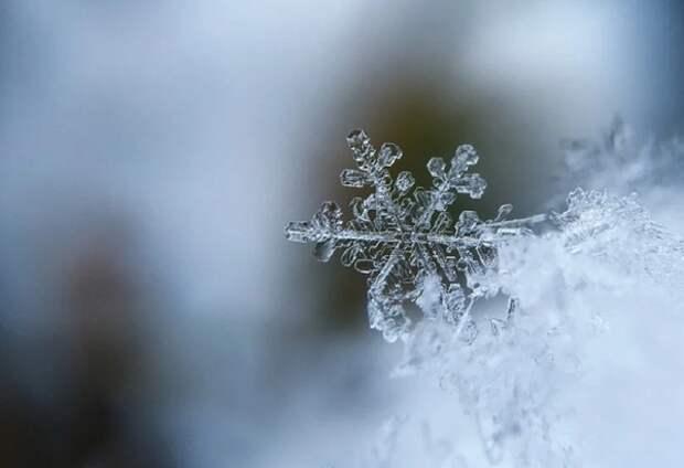 Синоптики рассказали, когда в Центральную Россию вернутся морозы