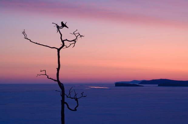 Сибирские пейзажи