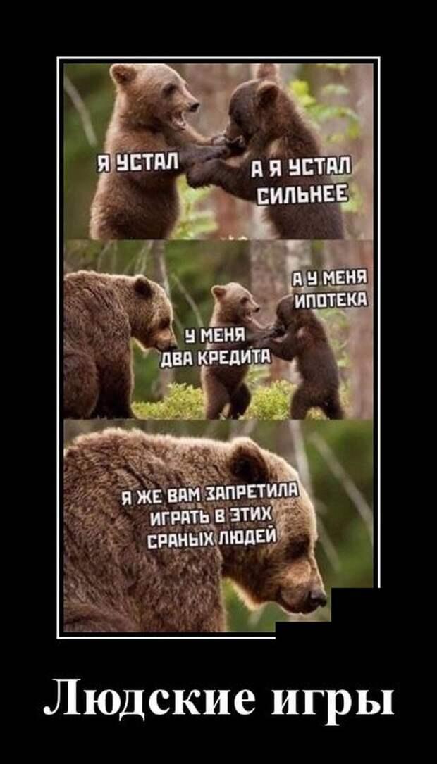 Демотиватор про медведей