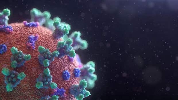 Михаил Мурашко оценил ситуацию с коронавирусом в России