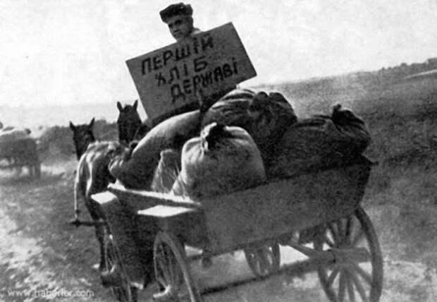 Голодомор: что на самом деле случилось на Украине в 1930-х