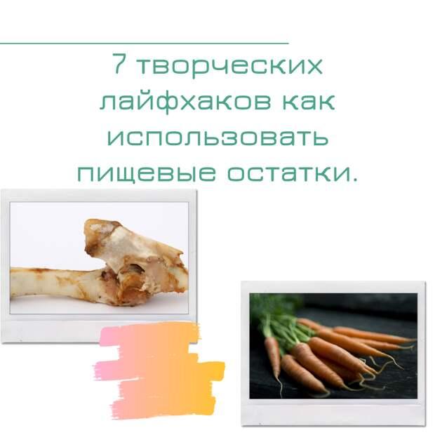 7 творческих лайфхаков как использовать пищевые остатки.