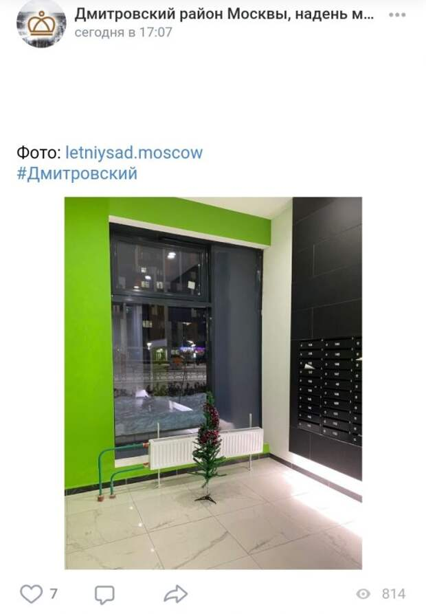 Фото дня: «повидавшая многое» ёлка в подъезде Дмитровского
