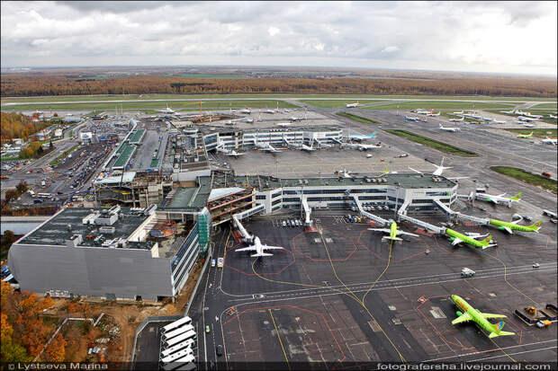 Российские авиакомпании увеличили перевозки пассажиров на 11,6%