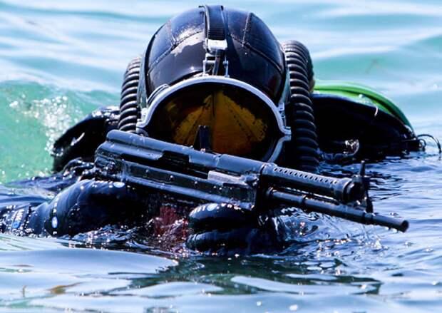 Эксперты объяснили восторженные отзывы иностранцев о подводном оружии РФ