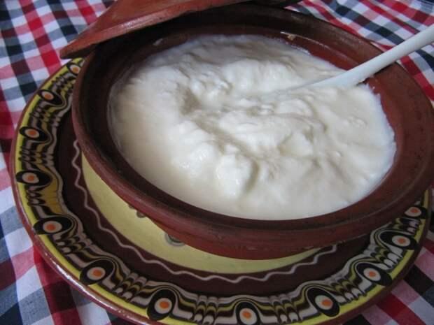 Не стоит покупать обезжиренный йогурт даже для похудения. /Фото: upload.wikimedia.org