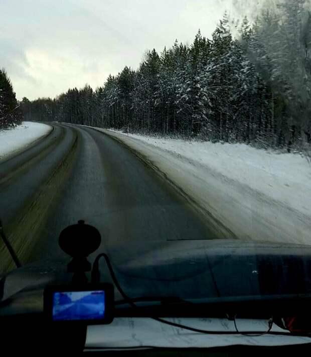 Зимняя дорога. Это не Пятёрка, это Федя. 😊 Фото Виктора Викторовича