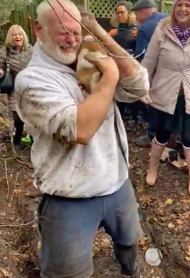Безутешный хозяин искал свою собаку, а между тем, два пса что-то вынюхивали возле лисьей норки