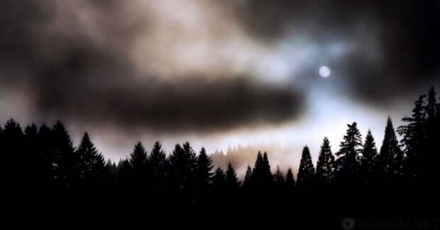 Уникальные случаи, когда природные явления побили все рекорды