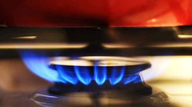 Поручение Путина позволит завершить газификацию Подмосковья раньше срока