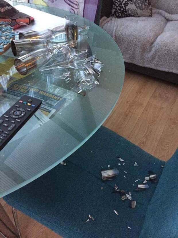 """""""А это он разбил мою любимую вазу…"""" Хозяева делятся очень """"личными"""" фото из домашних архивов!"""