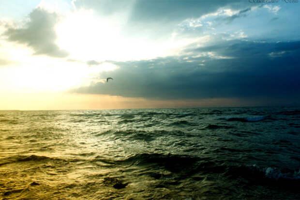 CO2 океан