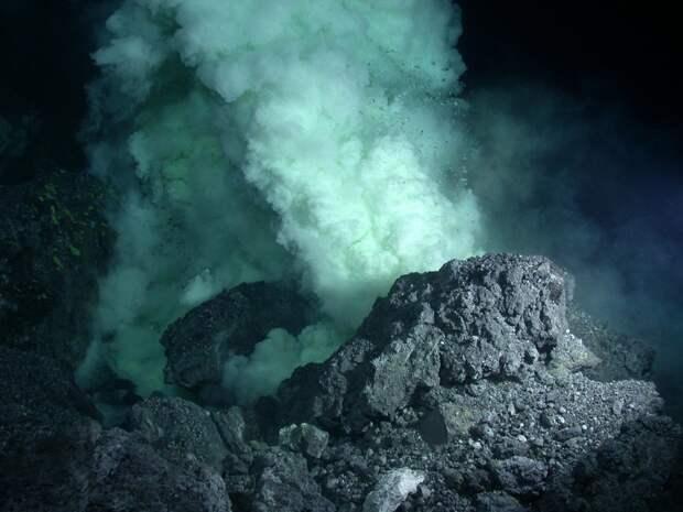 Возле подводного вулкана в районе Новой Зеландии найдены новые формы жизни